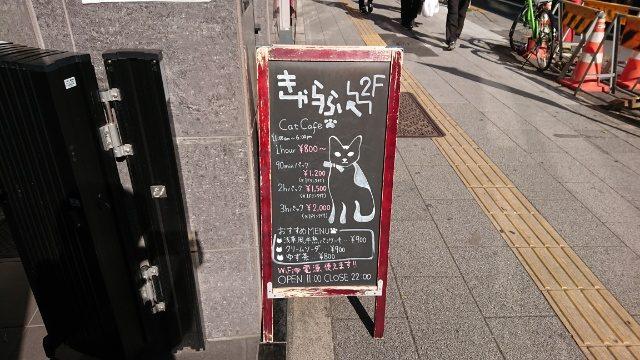 猫カフェきゃらふは、浅草駅から徒歩1分!